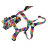 Classic harness 25mm wide The Chic Pet