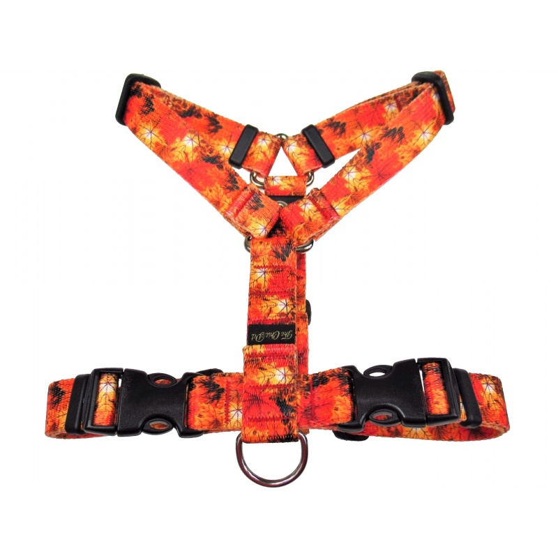Classic harness 20mm wide The Chic Pet