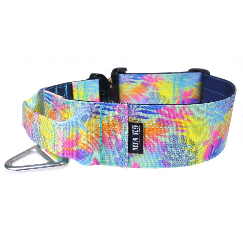 Spooks! Tactical Dog Collar 50mm/2inch wide