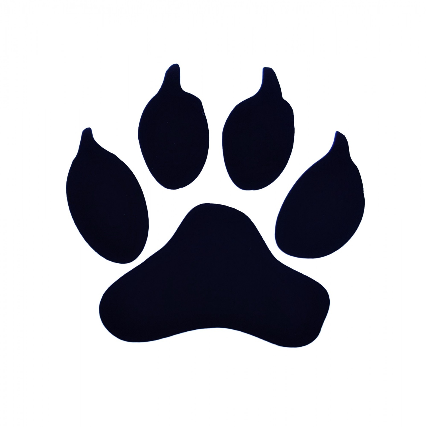 Dog Pawprint Decal Car And Wall High Quality Stickers